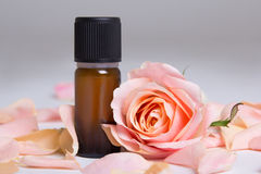 Bottle of essential oil and rose petals over grey Royalty Free Stock Images