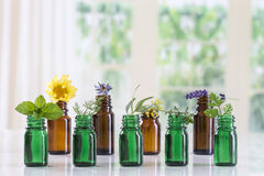 bottle of essential oil with selective medicinal herbs and plants stock photography