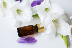 Bottle of essential oil with flowers Stock Photography