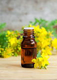 Bottle of essential St John's-wort oil (extract, tincture, infusion) Royalty Free Stock Photography