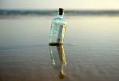Bottle with 50 euro inside. Bottle found on the beach with a fifty euro bill inside Royalty Free Stock Image