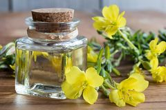 A bottle of evening primrose oil with evening primrose flowers Royalty Free Stock Photos