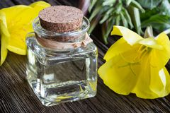 A bottle of evening primrose oil with evening primrose flowers Stock Photo