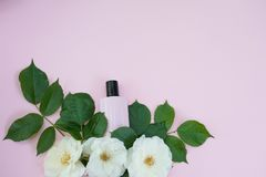 Bottle of female cosmetics with white flowers on pink color background, copy space royalty free stock image