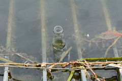 Bottle floating in river Royalty Free Stock Photos