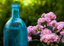 Bottle with flowers. Aroma therapy Stock Photography