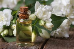 Bottle of fragrant jasmine essence closeup and flowers Stock Image