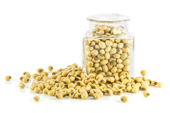 Bottle full of Soybeans Stock Photos