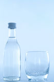 Bottle with glass Stock Image