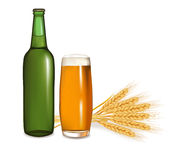 Bottle with glass of beer and some ears of wheat. Stock Photography
