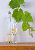 Bottle and a glass of dry wine Stock Images