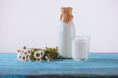 Bottle and glass of fresh milk with chamomile flowers on turquoise. Wooden tabletop stock photo