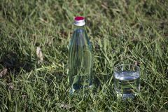 Bottle and glass with fresh  water on grass  background. royalty free stock images