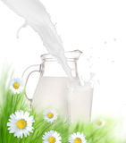 Bottle and glass of milk with grass Royalty Free Stock Photo