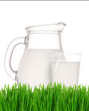 Bottle and glass of milk with grass Royalty Free Stock Photography