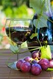 bottle glass red wine Стоковые Фотографии RF