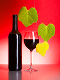 Bottle and glass of red wine with grape leaves Stock Photography