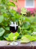 Bottle and glass with red wine Stock Photography