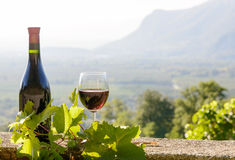 A bottle and a glass of red wine, Royalty Free Stock Photo