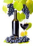 Bottle and glass of red wine whit grape clusters Royalty Free Stock Photography