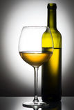 Bottle and glass of white wine Royalty Free Stock Photos