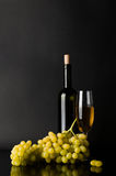 Bottle and glass of white wine with grapes Stock Photos