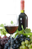 Bottle and glass of wine. South sun Stock Photo