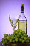 Bottle and glass of wine, grape bunch Stock Image