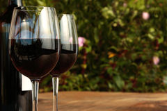 Bottle & Glasses of Red Wine on Table with Bush Stock Photography