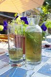 Bottle and glasses of Tarragon with herb inside Royalty Free Stock Photos