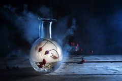 Bottle with glowing smoke and rose hips inside on a rustic wooden table against a dark blue background, mysterious halloween. Alchemy, still life with copy royalty free stock image