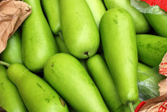 Bottle gourd. Selling at the markets Royalty Free Stock Photos