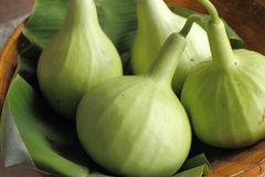 Bottle gourd Royalty Free Stock Photos