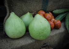 Bottle gourd in market Stock Photography