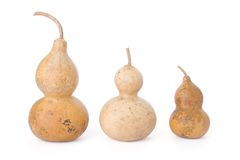 Bottle gourds isolated Royalty Free Stock Image