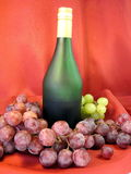 Bottle and grape stock image