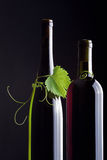 Bottle and grape leaves vertically Royalty Free Stock Photography