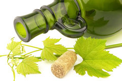 Bottle with grapevine Stock Photos