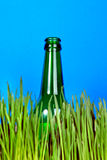 Bottle in the Grass Stock Image