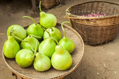 Bottle green gourds ( calabash ) Royalty Free Stock Photos
