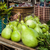 Bottle green gourds ( calabash ) Stock Photography