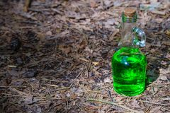 Bottle with green liquid in the forest.  Royalty Free Stock Photos
