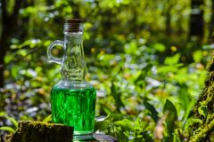 Bottle with green liquid on a stump on a sunny day. Filter oil p Stock Photo
