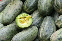 Bottle-green melons Royalty Free Stock Photos