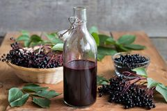 A bottle of homemade elderberry syrup on a wooden table. A bottle of elderberry syrup on a wooden table, with fresh elderberries in the background royalty free stock image