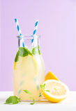 Bottle of homemade lemonade with mint, ice, lemons, paper straws and pastel lilac background Royalty Free Stock Photo