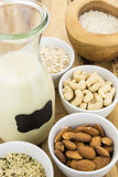 Bottle of homemade plant based milk and bowls with ingredients Stock Photography
