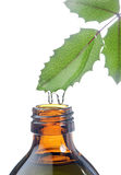 Bottle with homeopathy balm and leaf Royalty Free Stock Photography