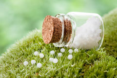 Bottle of homeopathy globules on  moss Stock Photography