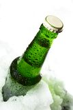 bottle in ice Stock Images